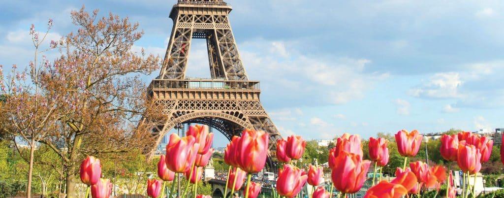 Eiffel Tower - French