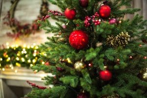 Avanti Senior Living - Christmas Tree