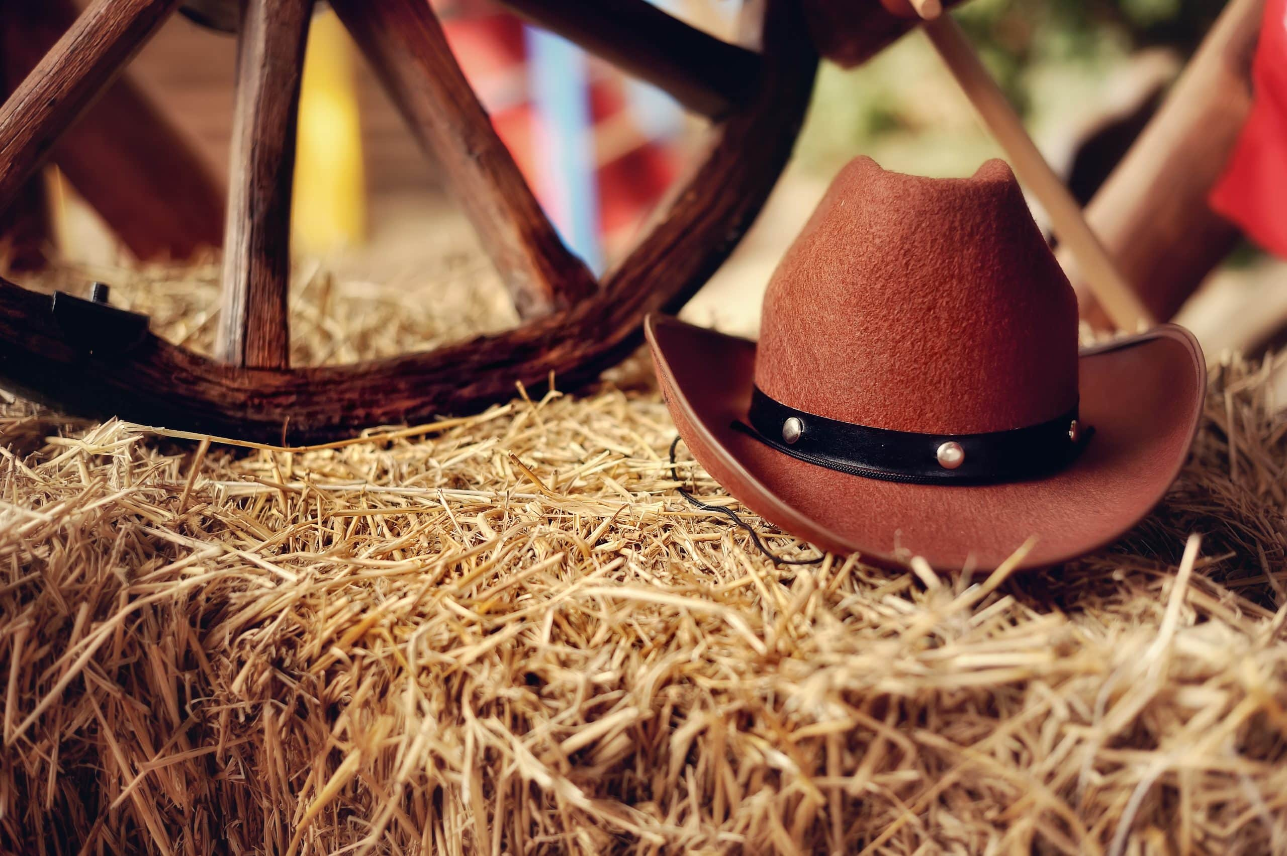 Avanti Senior Living - Cowboy hat